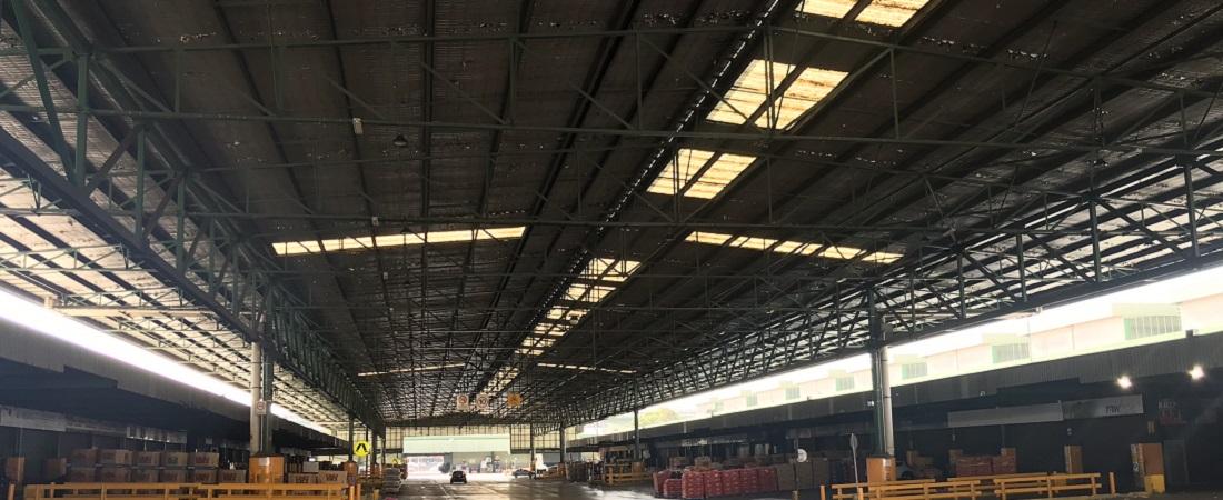 Sydney Lighting Market Upgrade slider image 3